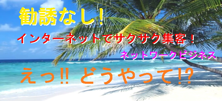 TOP画像(海岸やし).jpg